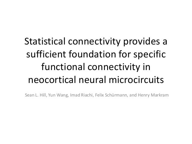 Statistical connectivity provides asufficient foundation for specific    functional connectivity in neocortical neural mic...