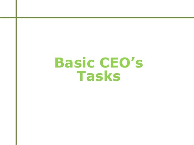 Basic CEO's Tasks