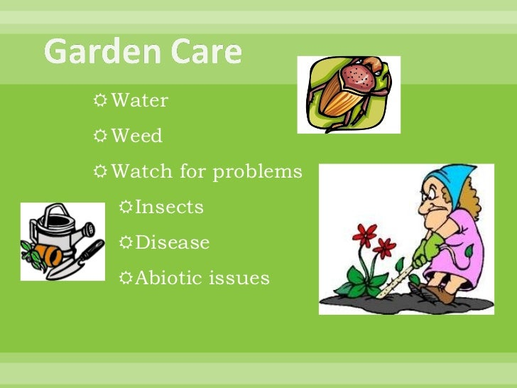 Basic gardening for wise women for helen