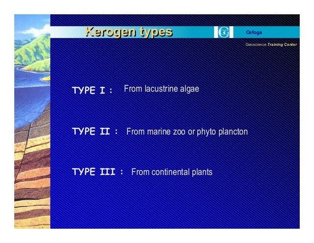 Geoscience Training Center Cefoga Kerogen typesKerogen types TYPE I : TYPE II : TYPE III : From lacustrine algae From mari...