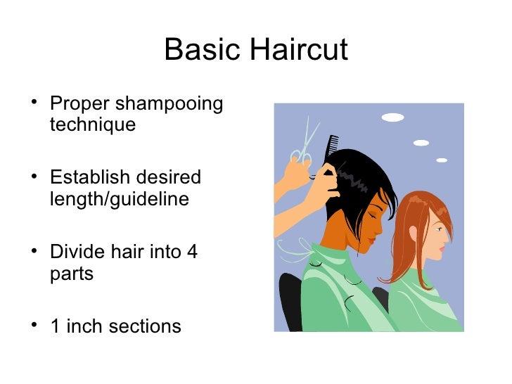 Basic Haircut