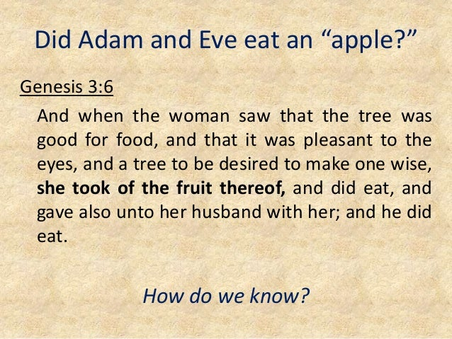"""Did Adam and Eve eat an """"apple?"""" Genesis 3:6 And when the woman saw that the tree was good for food, and that it was pleas..."""