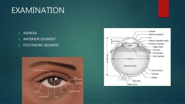 6cf440c4996 Basic history and eye examination