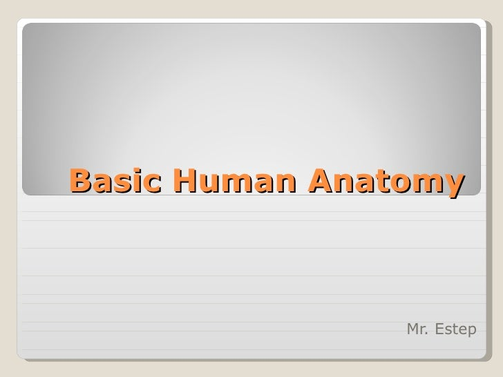 Basic Human Anatomy Ppt Powerpoint 1