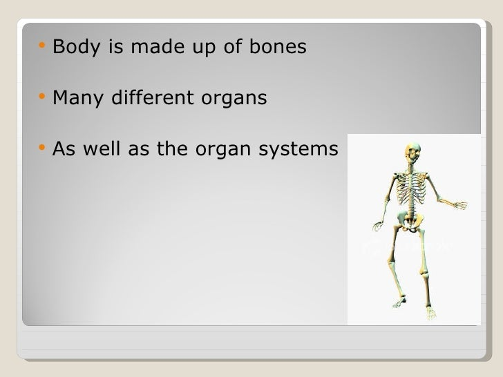 Human anatomy basic