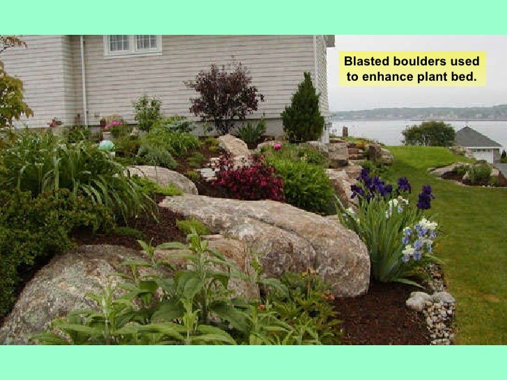 Basic landscape design for Basic landscape plan