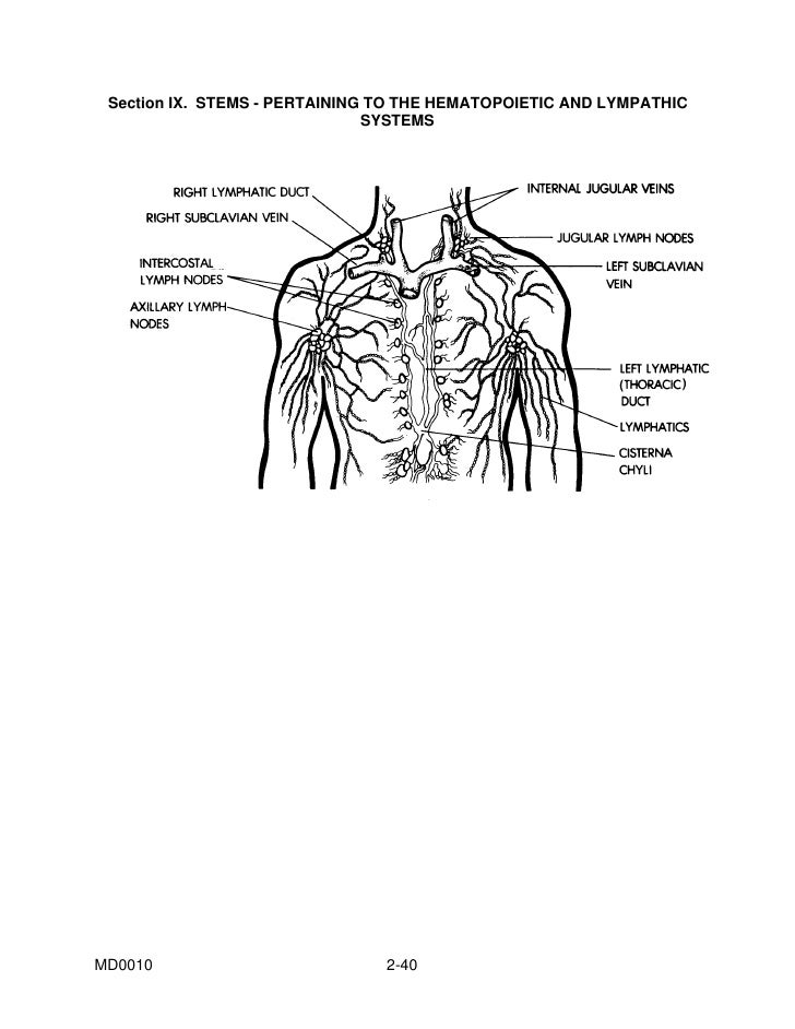 IVMS-Basic Medical Terminology-PROGRAMMED INSTRUCTION