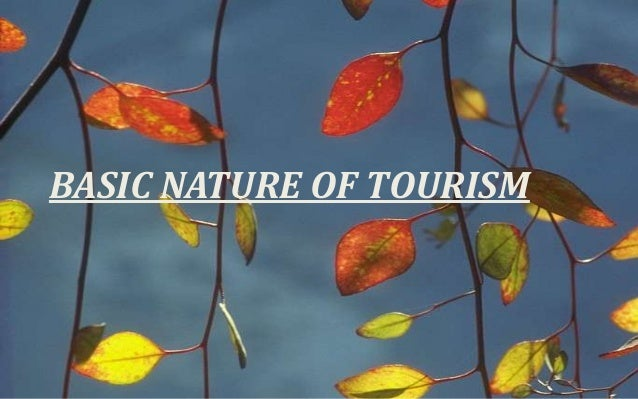 BASIC NATURE OF TOURISM