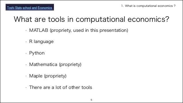 Basic of computational economics with MATLAB program