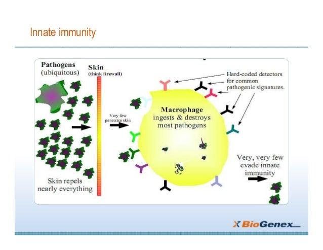Basic of immunology