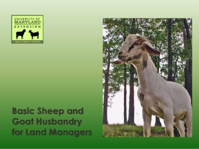 Basic Sheep andGoat Husbandryfor Land Managers