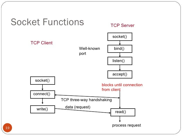 what are the four components of a network socket
