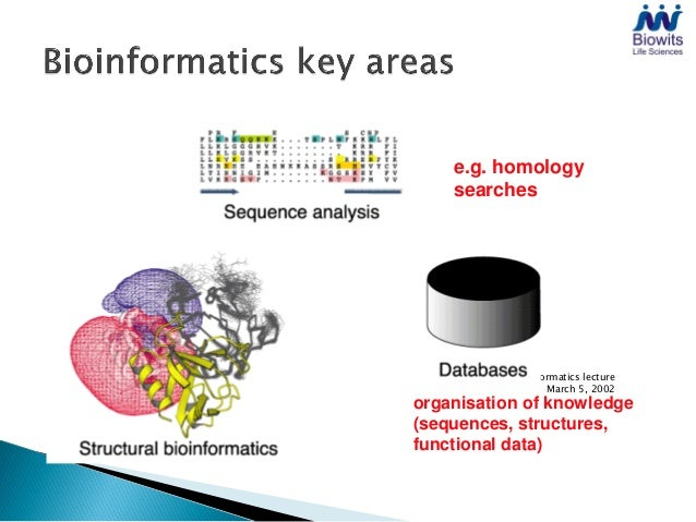 e.g. homology    searches           Bioinformatics lecture                  March 5, 2002organisation of knowledge(sequenc...