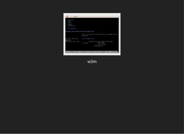 W3m Windows 10