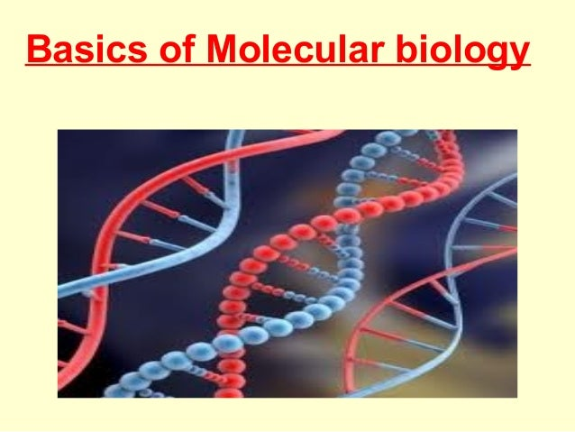 Basic Biology Pdf