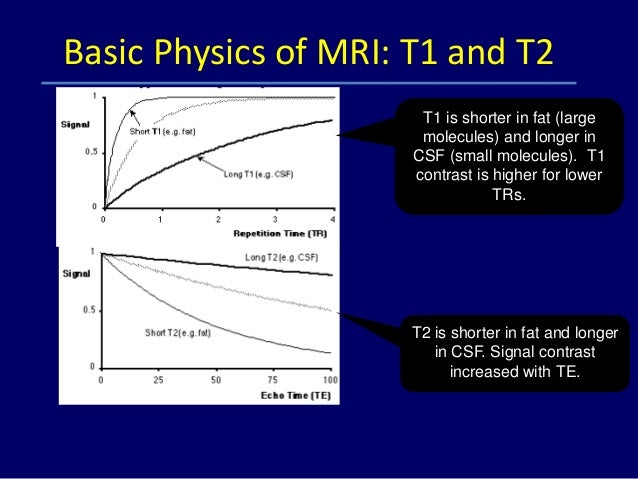 BASIC MRI PHYSICS PDF DOWNLOAD