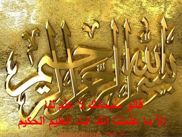 قالو سُبحانك ل ا ع لام لنا  ا ل اما ع لامتنا انك انت العليمُ الحكيم  Surah Al Baqarah verse 32