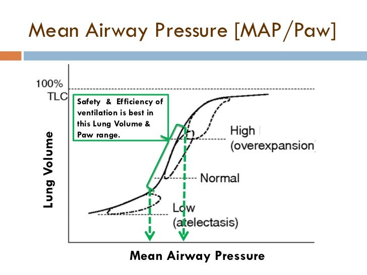 Basics Of Neonatal Ventilation 1 on high blood pressure diagram