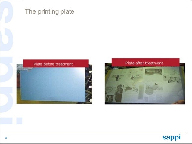 The printing plate25