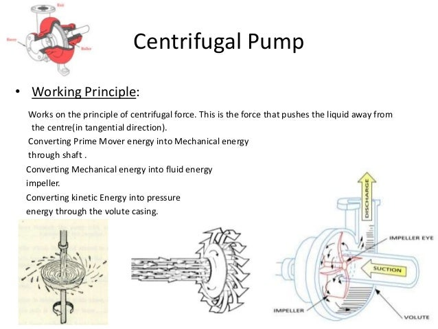 Basics Of Pump Presentation also Muscle Unit Anatomy Motor Pool Neuroscience Wikipedia The Free Encyclopedia besides Uae Is Most  petitive Nation In The Arab World moreover Top 5 Triton Motorcycles moreover Basics Parts Of Light Bulb 25. on motor basics