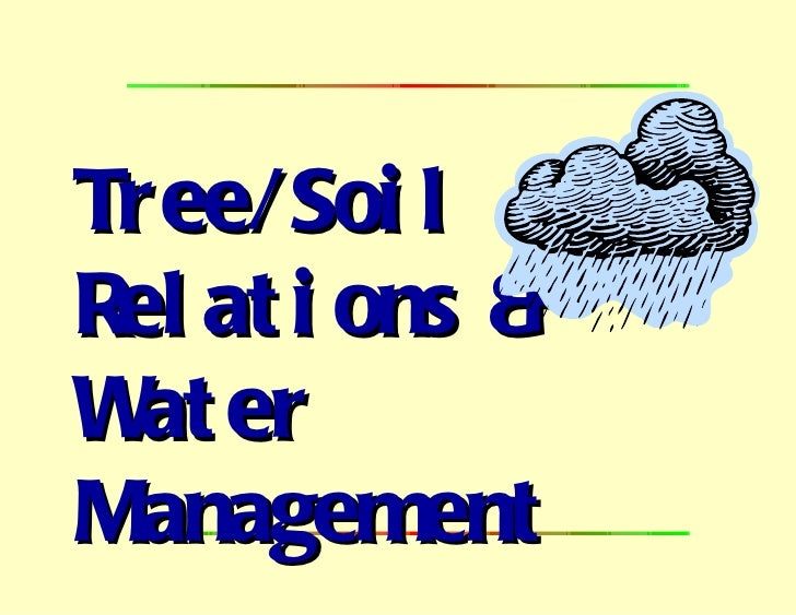 Tree/Soil  Relations &  Water Management
