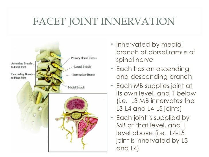Basic Spine Injections