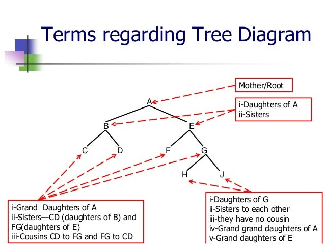Tree diagram basic wiring diagram for light switch basic terms of tree diagram rh slideshare net tree diagram examples pdf tree diagram basics ccuart Gallery