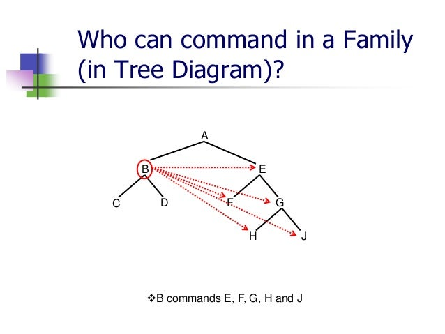 Basic terms of tree diagram 14 ccuart Choice Image