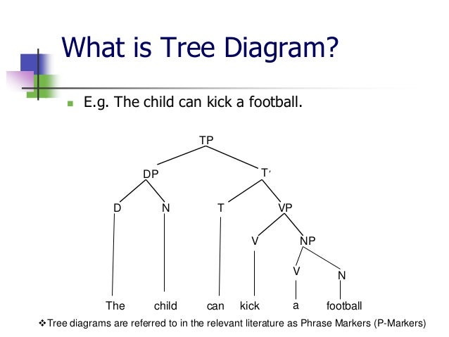 Literature tree diagram wiring literature tree diagram data wiring diagrams u2022 geometry tree diagram literature tree diagram ccuart Image collections