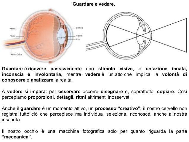 Basi percettive e codici visivi Slide 3