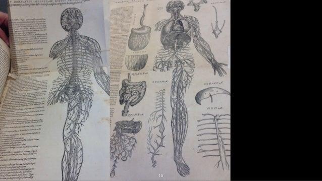 Bass & Shipman (2015) Memory Makers of Human Anatomy Studies at the U…