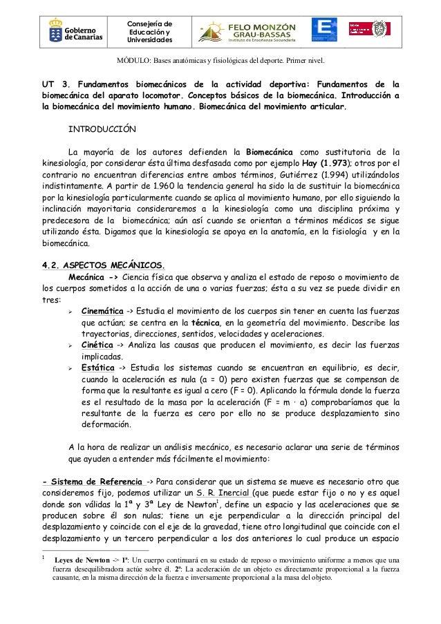 Vistoso Términos Básicos De Anatomía Y Fisiología Foto - Imágenes de ...