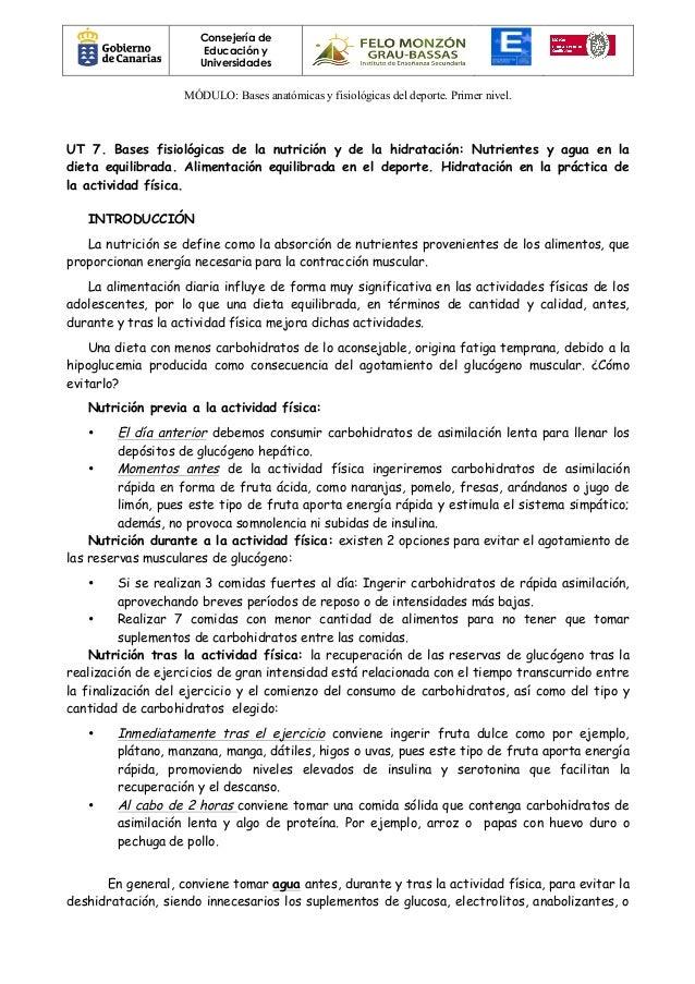 Lujoso Es La Anatomía Y Fisiología Duro Adorno - Imágenes de ...