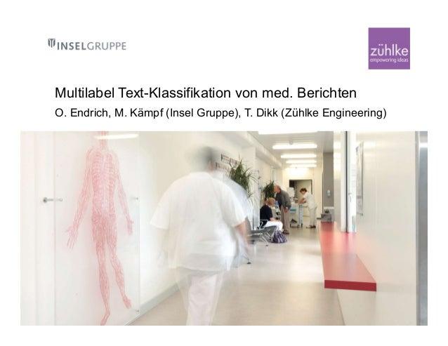 BAT40 InselGruppe Zuehlke Endrich Kämpf Dikk Multilabel Text-Klassifi…