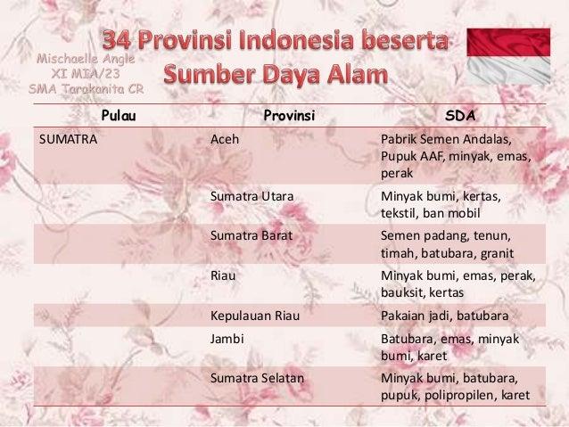 Sumber Daya Alam Tiap Provinsi Di Indonesia