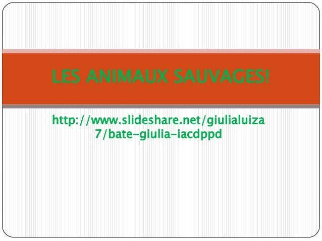 http://www.slideshare.net/giulialuiza 7/bate-giulia-iacdppd LES ANIMAUX SAUVAGES!