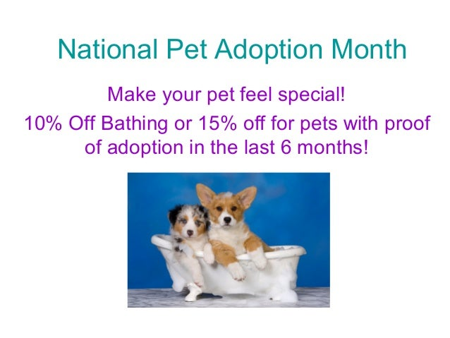 National Pet Adoption Month Make your pet feel special! 10% Off Bathing or 15% off for pets with proof of adoption in the ...