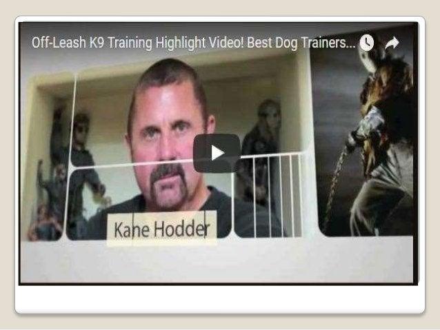Dog Trainer Baton Rouge Louisiana | Dog Trainer Baton Rouge| Dog Training Baton Rouge | Dog Trainer Baton Rouge | Off Leas...