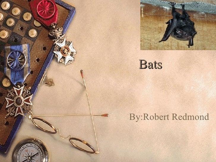 Bats By:Robert Redmond
