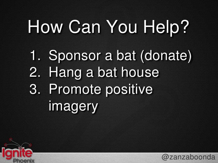 How Can You Help?<br />Sponsor a bat (donate)<br />Hang a bat house<br />Promote positive imagery<br />