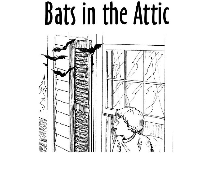 Bats In The Attic(fictional story)