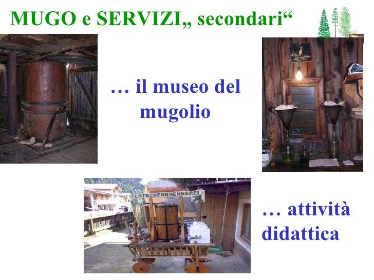 """MUGO e SERVIZI"""" secondari"""" …  il museo del mugolio …  attività didattica"""