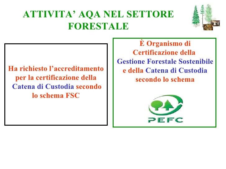 ATTIVITA' AQA NEL SETTORE FORESTALE È Organismo di Certificazione della  Gestione Forestale Sostenibile e della  Catena di...