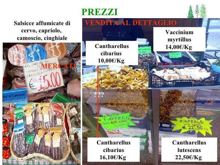 PREZZI Cantharellus cibarius 16,10 € /Kg   Cantharellus lutescens 22,50€/Kg   Cantharellus cibarius  10,00 € /Kg  Vacciniu...