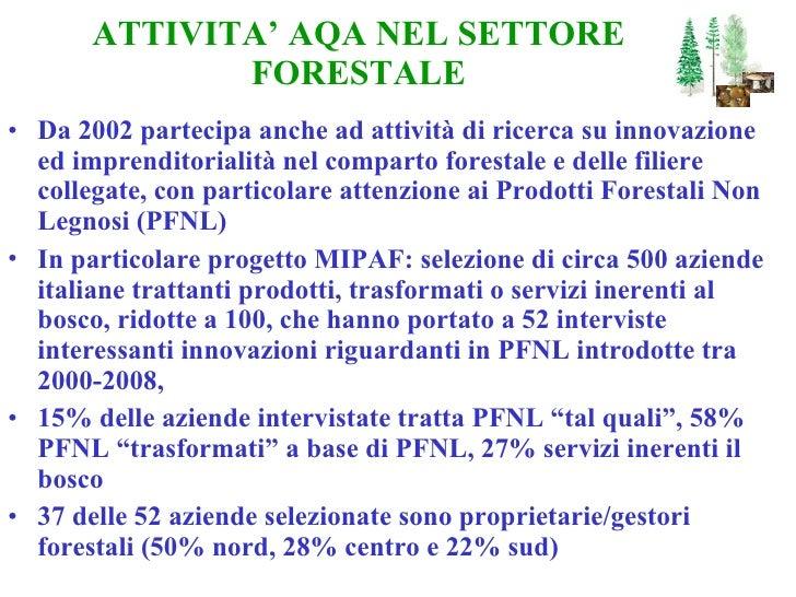 ATTIVITA' AQA NEL SETTORE FORESTALE <ul><li>Da 2002 partecipa anche ad attività di ricerca su innovazione ed imprenditoria...