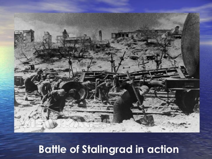 essay on stalingrad The battle of stalingrad was one of the biggest, cruellest and most important battles of the world war ii the city was called in the name of stalin, the leader of the red army and if the germans captured it would be great propaganda for them and it would decrease the russian morale, so stalin made his army fight until death.