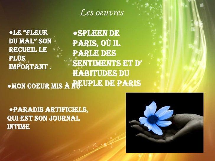 Baudelaire par alessia et anna Slide 3