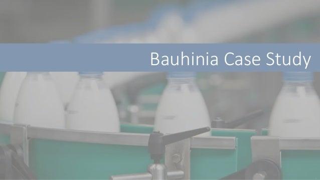 Bauhinia Case Study