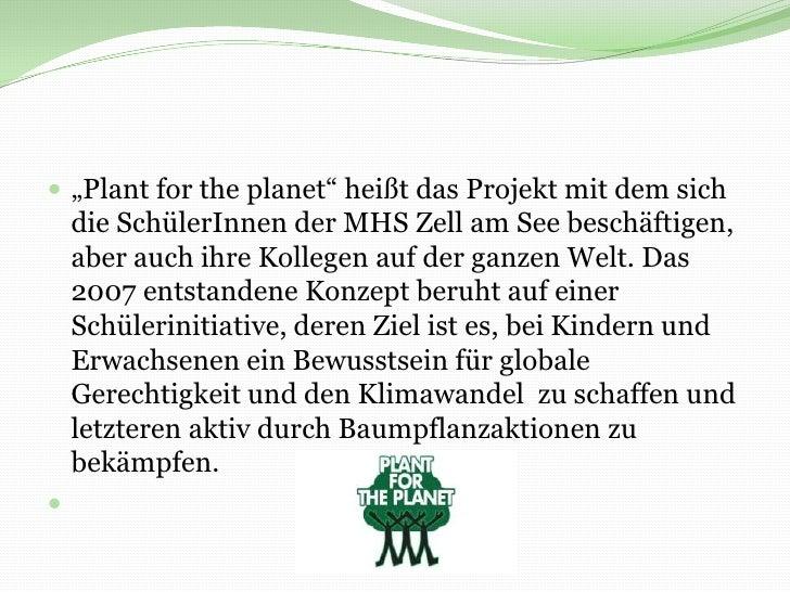 """""""Plant forthe planet"""" heißt das Projekt mit dem sich die SchülerInnen der MHS Zell am See beschäftigen, aber auch ihre Kol..."""