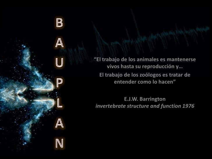 """BAUPLAN<br />""""El trabajo de los animales es mantenerse vivos hasta su reproducción y…<br />El trabajo de los zoólogos es t..."""